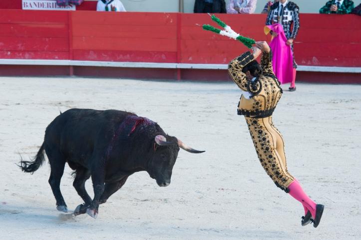 corrida-ales-2013-021