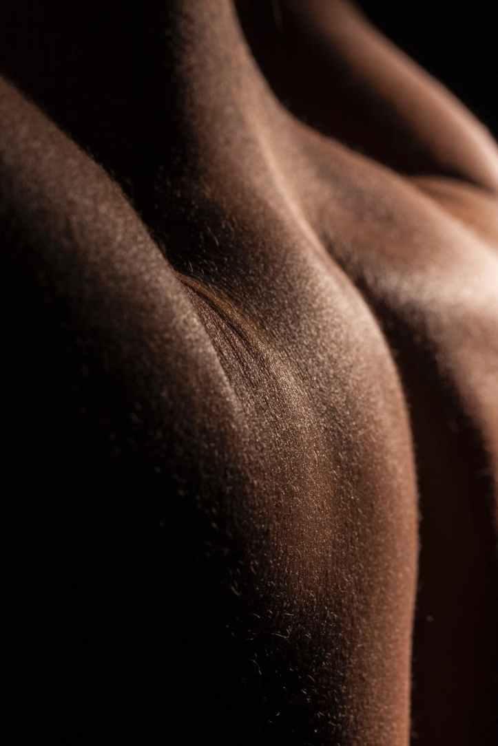 photo en gros plan du dos de la personne